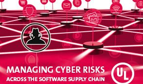 Managing Cyber Risks